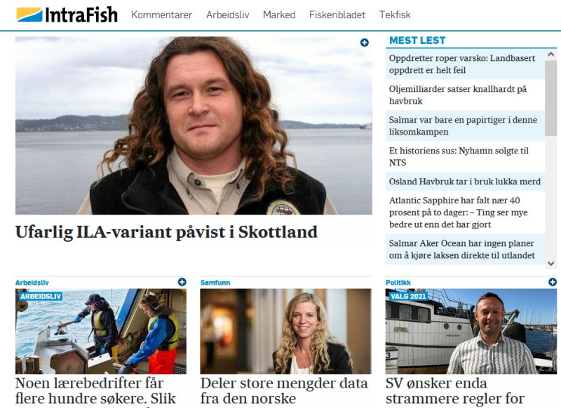 Intrafish 31 Aug ISA story in Norwegian #1
