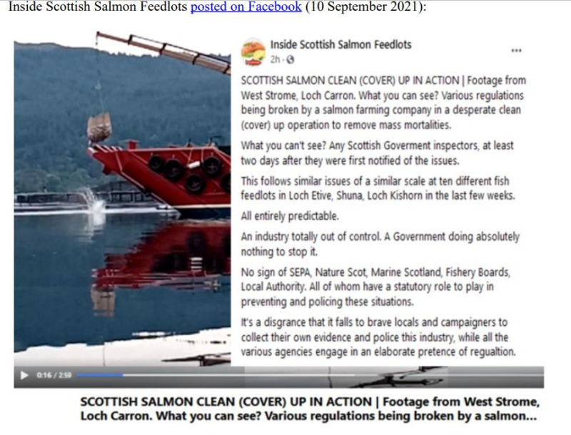 PR Horror Videos Reveal Welfare Abuse Inside Scottish Salmon & Trout Cages 12 September 2021 #14