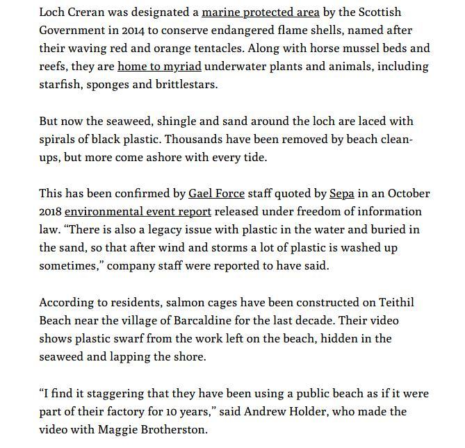 MCS beach clean #11