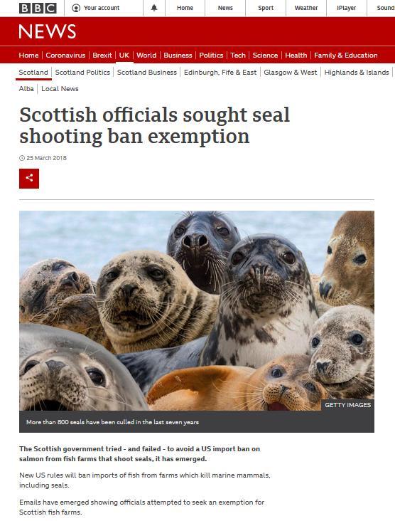 BBC blog #14