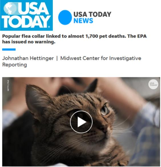Pet deaths blog June 2021 #13