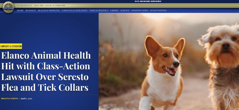 Pet deaths blog June 2021 #16