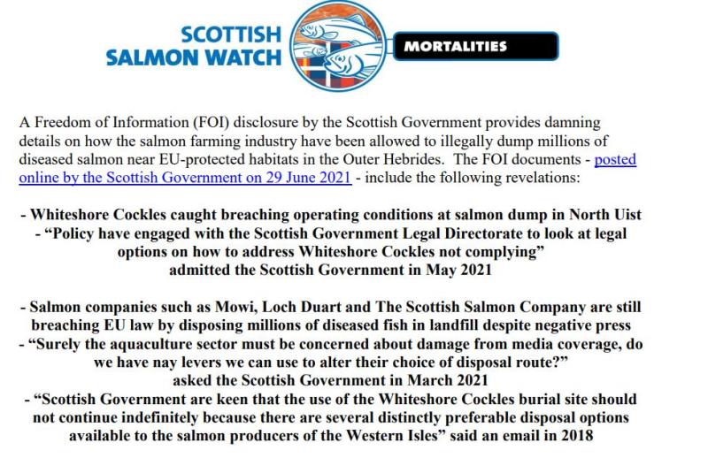 Media Backgrounder FOI Lifts Lid July 2021 #1