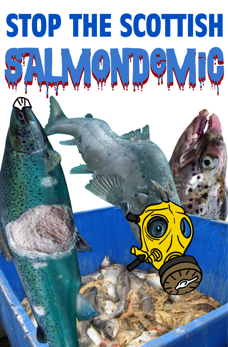 Salmondemic graphic June 2021 higher res