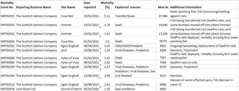 Salmondemic blog July 2021 #8 seals blamed