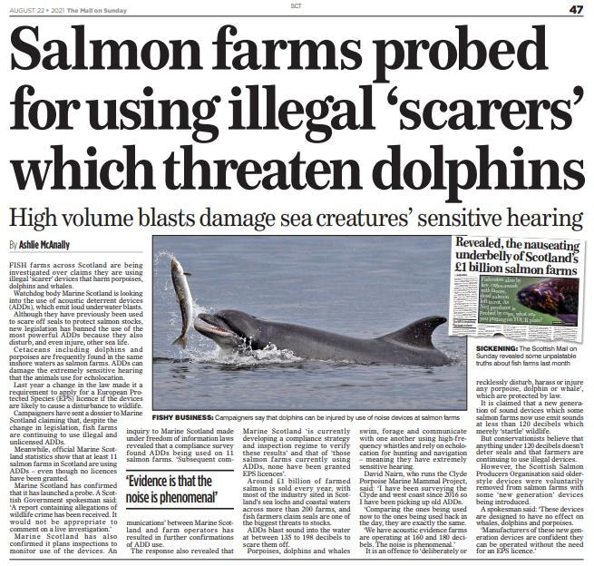 Mail on Sunday ADD illegal 22 August 2021 newspaper in full