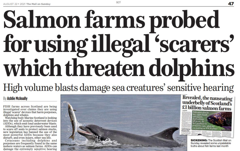 Mail on Sunday ADD illegal 22 August 2021 #1
