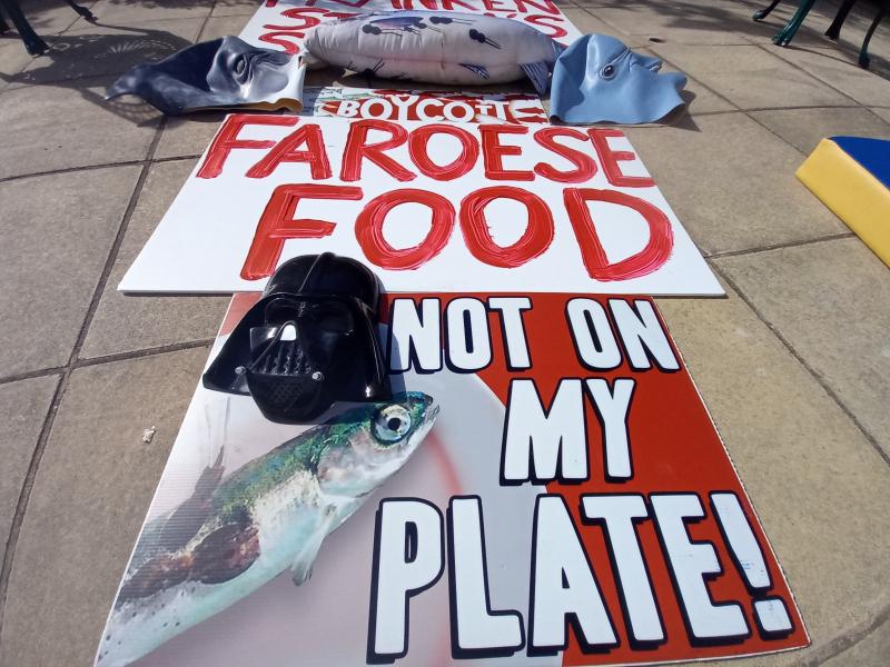 Stein protest photo #2