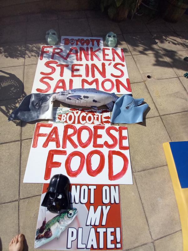 Stein protest photo #4