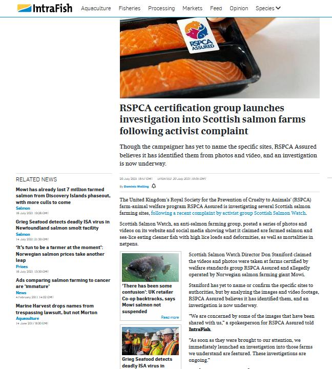 Intrafish 11 Oct 2021 Mowi fed up with activist taking brains to court #6